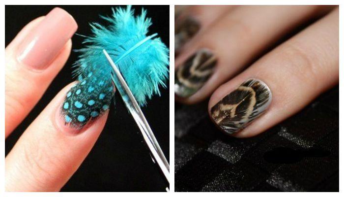 Дизайн ногтей: маникюр с перьями