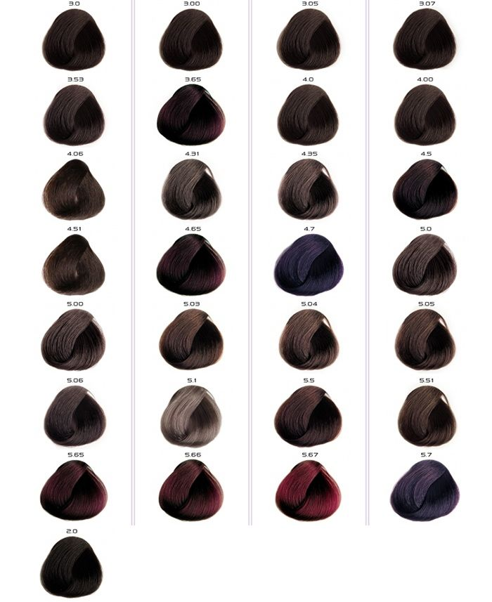 Палитра цветов краски ColorEvo Hair Cream. Темные оттенки