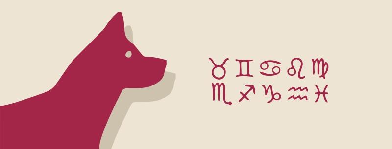 2018 год какого животного — гороскоп от астролога