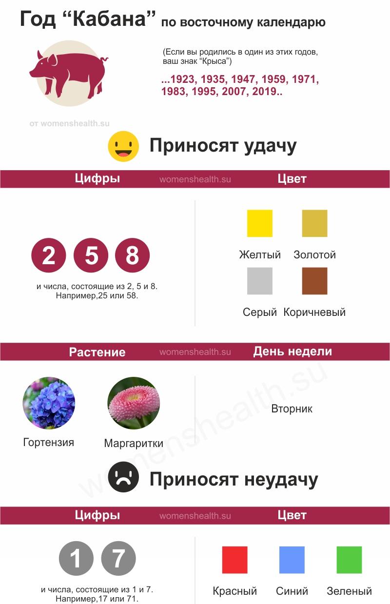 Инфографика: характеристика 2019 года Кабана | Свиньи